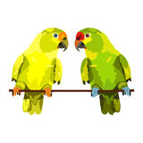 Vector illustration of two parrots Stock Photography