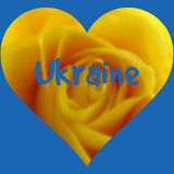 Vector illustration of Ukraine Flag Heart. With yellow rose Stock Image