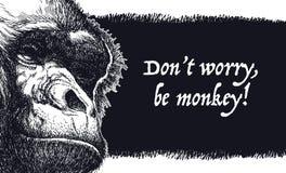 Vector illustration Urban gorilla vector poster. Stock Photography