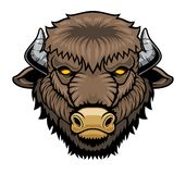 Bison head mascot. Vector illustration for use as print, poster, sticker, logo, tattoo, emblem and other vector illustration