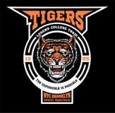 Mascot Tigers - sport team logo template. royalty free illustration