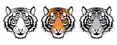 Set of tiger heads. royalty free illustration