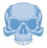 Skull. royalty free illustration