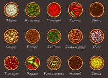 Vector illustration of a variety of spices and herbs in wooden bowls on a black background. Top view. Template, design element Stock Photography
