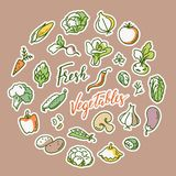 Vector illustration of vegetable with a place for text. stock illustration