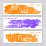 Vector illustration of vegetables banners with brushed stripe on wooden backdrop. Carrot, eggplant, pumpkin Stock Images