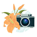 Vector illustration of vintage camera and beautiful lily. Stock Images