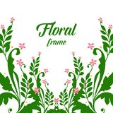 Vector illustration vintage card with frame wreath foliage green royalty free illustration
