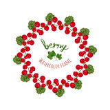 Vector illustration with watercolor red currants frame. Hand drawn berry for farmers market,  herbal tea Stock Photos