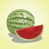Vector illustration -  watermelon. A watermelon & slice with Illustrator Stock Photos