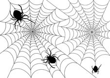 The vector illustration of web and spiders Royalty Free Stock Photo