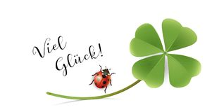 Good luck Card with shamrock and ladybug, New Year and Congratulation  Card. Vector illustration  on white background Stock Images