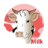 Vector illustration of a white cow (milk) Royalty Free Stock Photo