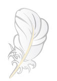 Vector illustration a white feather  Royalty Free Stock Photography