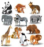 Wild animals and their babies. Vector illustration of wild animals and their babies isolated on a white background Royalty Free Stock Image