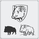 Vector illustration of a wild boar. Stock Images