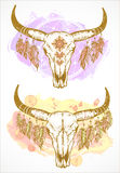 Vector illustration with a wild buffalo skull and roses, in the boho style. Royalty Free Stock Image