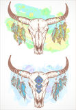 Vector illustration with a wild buffalo skull and roses, in the boho style. Stock Photo