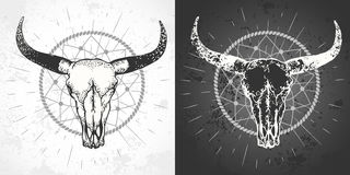 Vector illustration with a wild buffalo skull and roses, in the boho style. vector illustration