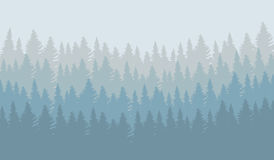 Vector illustration of wild coniferous forest. In morning fog Stock Photography