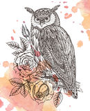 Vector illustration of wild totem animal - Owl with roses Stock Photo
