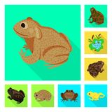 Vector illustration of wildlife and bog logo. Collection of wildlife and reptile vector icon for stock. Isolated object of wildlife and bog icon. Set of vector illustration