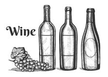 A wine bottles and grapes bunch. Vector illustration of a wine bottles and grapes bunch. Vintage engraving style Royalty Free Stock Photo