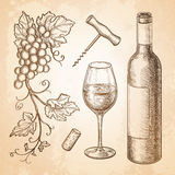 Vector illustration of wine Stock Photography