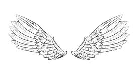 Vector wings Royalty Free Stock Photo