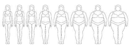 Vector illustration of woman contours with different weight from anorexia to extremely obese. vector illustration