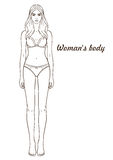 Vector illustration of woman`s body. Isolated outline, line, contour. Template girl in underclothes. Paper doll Royalty Free Stock Image