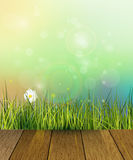 Vector illustration wood floor and Green grass. White Gerbera- Daisy flowers meadow . Water drops dew on green leaves. Blue-green pastel color and Bokeh effect Royalty Free Stock Image