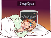 Vector illustration of a young girl sleeping and Sleep cycle gr Royalty Free Stock Photos