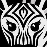 Vector illustration. Zebra. Stock Photography