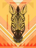 Vector illustration with zebra head Royalty Free Stock Photos