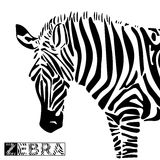 Vector illustration of zebra Stock Photo