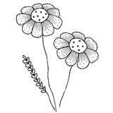 Vector illustrations of flowers. Royalty Free Stock Photography