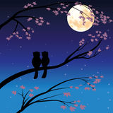 Vector illustrations ,owl romantic couples Royalty Free Stock Photography
