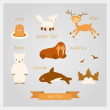 Vector illustrations of polar animals. Vector cartoon illustrations of polar animals Royalty Free Stock Photos