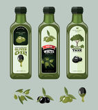 Vector illustrations set of Olives Royalty Free Stock Images