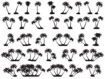 Vector illustrations silhouette of palm trees Royalty Free Stock Images