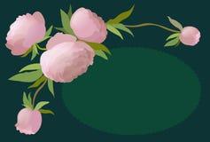 Vector Illustrationsblumengrenze mit Pfingstrose für Einladungen und Glückwunschkarten Lizenzfreies Stockfoto