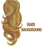 Vector Illustrationslocken der Vektorillustration des blonden Haares Lizenzfreies Stockfoto