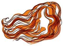 Vector Illustrationsschattenbild des Haares der Frauen und des Gesicht Brunette und der Rothaarigen Stockbild