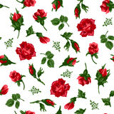 Vector illustrator of red roses seamless pattern Royalty Free Stock Photos