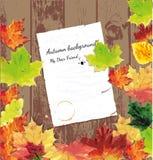 Vector illustratuon van de herfst Stock Afbeelding