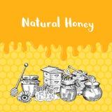 Vector a ilustração com elementos do mel, mel de gotejamento e lugar para o texto ilustração royalty free