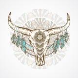 Vector a ilustração com um crânio selvagem do búfalo com testes padrões decorativos ilustração do vetor
