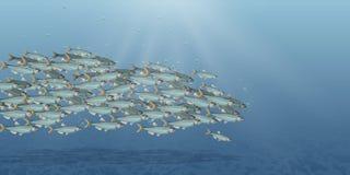 Vector a ilustração da paisagem do mar, escola dos peixes Abundância dos arenques ou do bacalhau que movem-se no mar Desenhos ani ilustração stock