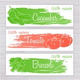 Vector a ilustração de bandeiras dos vegetais com listra escovada Imagens de Stock Royalty Free